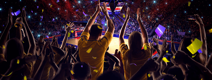 crowd cheering in a basketball stadium